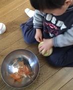 玉ねぎの皮をむく1歳児